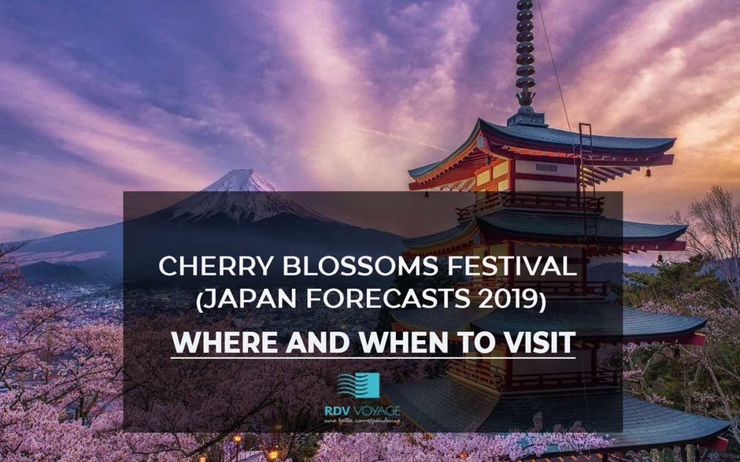 Cherry Blossoms Festival (Japan Forecasts 2019) Where and When to Visit