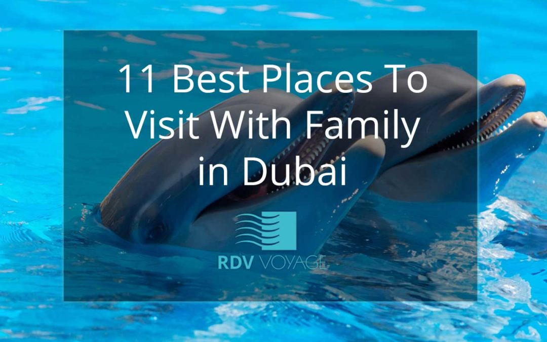 11 Best Places To Visit With Family In Dubai