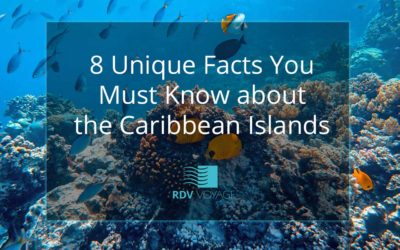 8 Unique Facts You Must Know about the Caribbean Islands